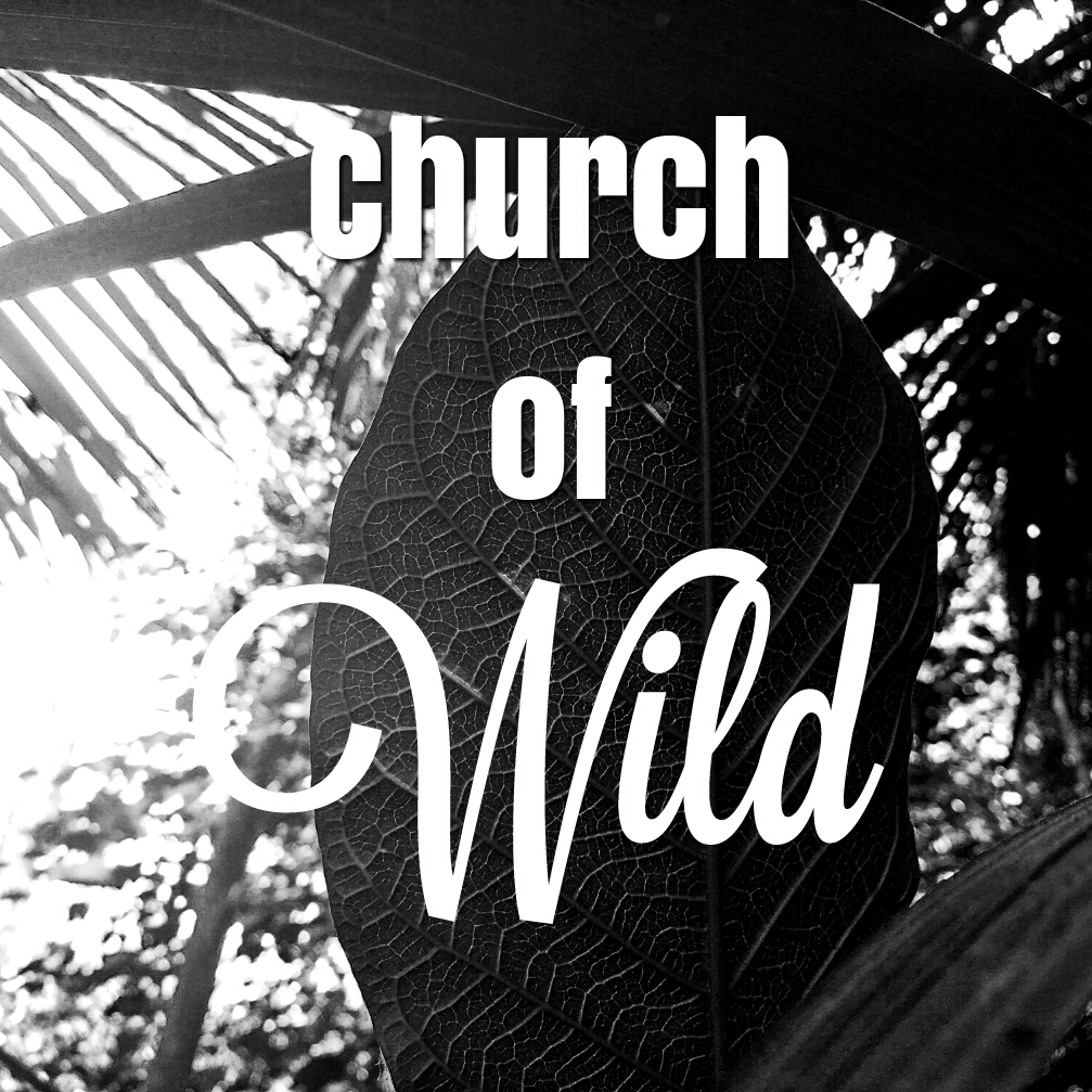 church of wild logo