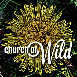 The Church of Wild is really, actually, finally here!