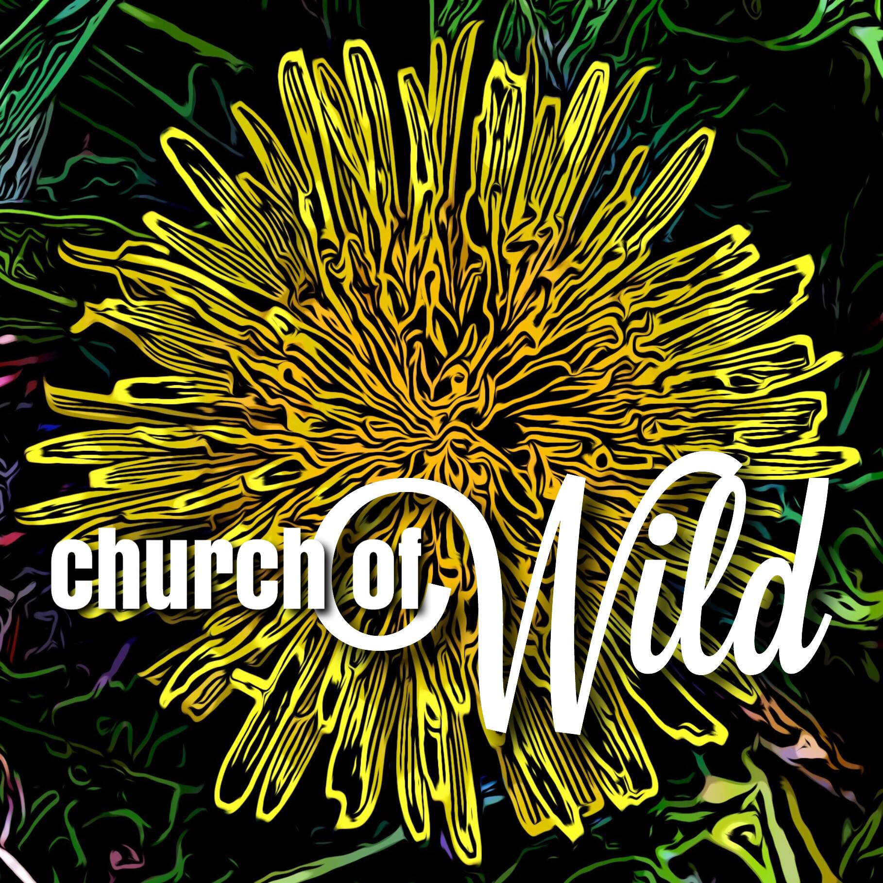 Stylized dandelion on a black background with the Church of Wild in text